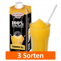SLUSHYBOY's finest | 0,5-Tetra-Pak 100% Pure Fruit Frozen Smoothie Sirup in 3 Sorten
